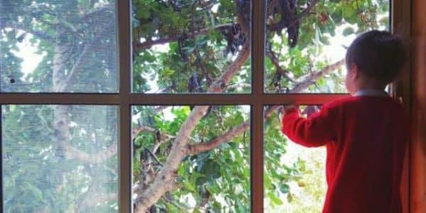 חלון פתיחה מנימלסטי מאלומיניום